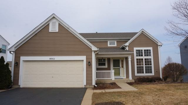 9911 Chetwood Drive, Huntley, IL 60142 (MLS #10280989) :: Helen Oliveri Real Estate