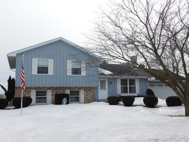 505 W Cherokee Avenue, Shabbona, IL 60550 (MLS #10292175) :: Domain Realty