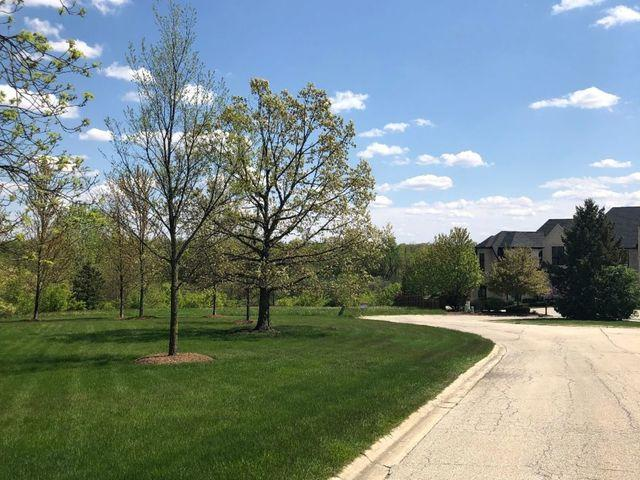Lot 10 Plattner Court, Mokena, IL 60448 (MLS #10292338) :: Littlefield Group