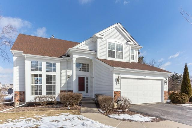 1208 Shefield Avenue, Mundelein, IL 60060 (MLS #10300588) :: Baz Realty Network | Keller Williams Preferred Realty
