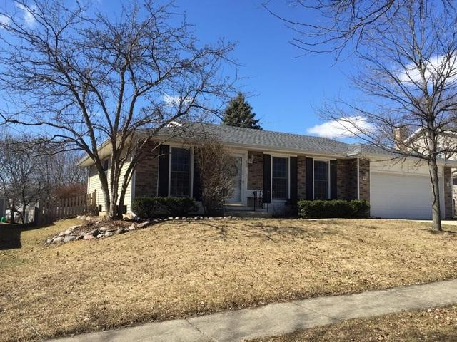220 Quincy Lane, Roselle, IL 60172 (MLS #10302514) :: Janet Jurich Realty Group