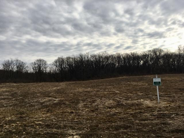 Lot #16 Oakmont Drive, Woodstock, IL 60098 (MLS #10313510) :: Berkshire Hathaway HomeServices Snyder Real Estate