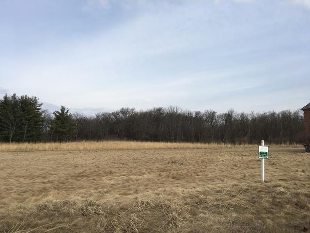 Lot #29 W Longwood Drive, Woodstock, IL 60098 (MLS #10313517) :: Berkshire Hathaway HomeServices Snyder Real Estate