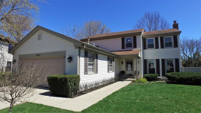 1041 Shambliss Court, Buffalo Grove, IL 60089 (MLS #10313798) :: Helen Oliveri Real Estate