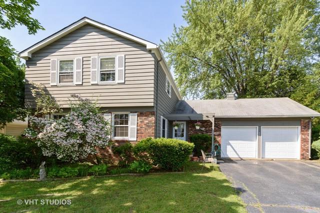 931 Shady Grove Lane, Buffalo Grove, IL 60089 (MLS #10315640) :: T2K Properties