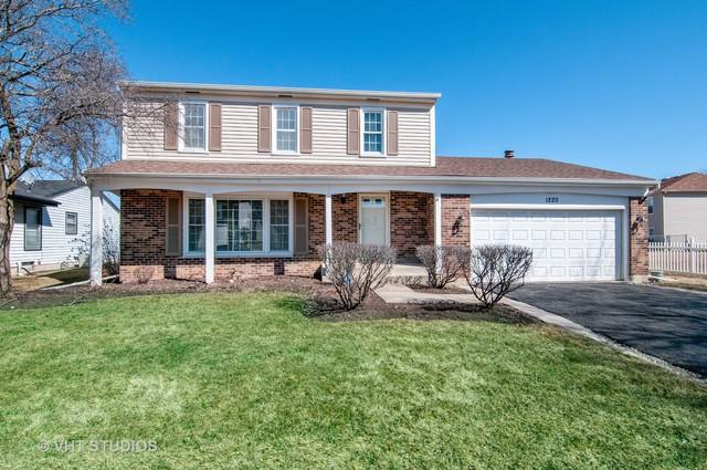 1220 Andover Drive, Roselle, IL 60172 (MLS #10322962) :: BNRealty