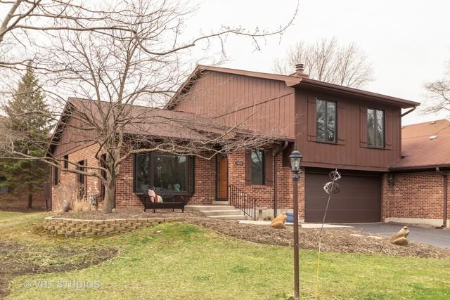 11828 S Brookside Drive, Palos Park, IL 60464 (MLS #10330176) :: Domain Realty