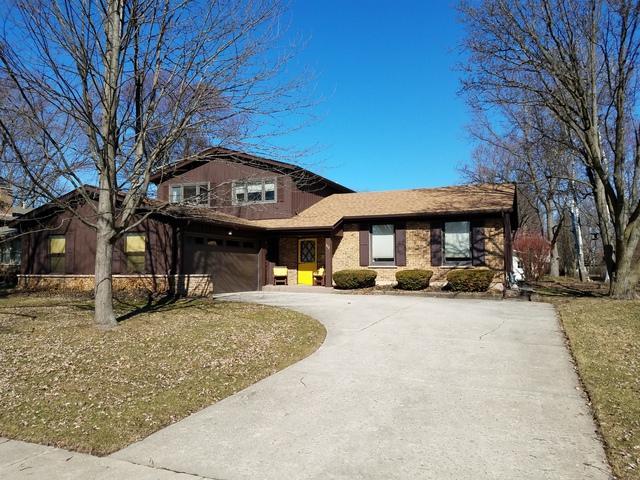 117 Tupelo Avenue, Naperville, IL 60540 (MLS #10333686) :: Helen Oliveri Real Estate