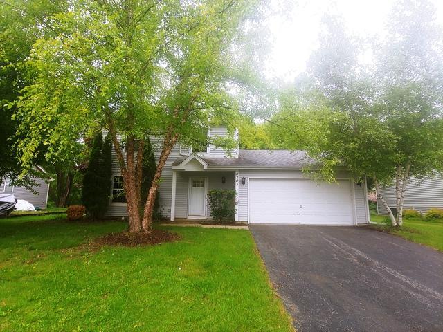 4203 Hale Lane, Island Lake, IL 60042 (MLS #10341667) :: Angela Walker Homes Real Estate Group