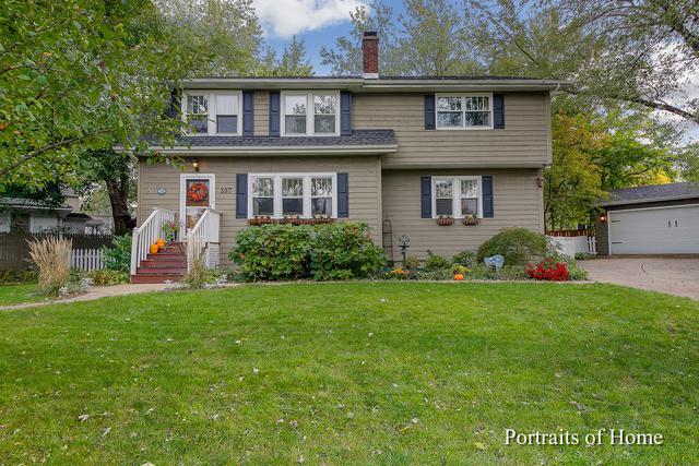 397 Lorraine Street, Glen Ellyn, IL 60137 (MLS #10346018) :: Domain Realty