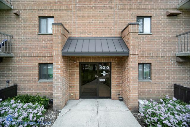 6010 Lake Bluff Drive #202, Tinley Park, IL 60477 (MLS #10347913) :: Touchstone Group