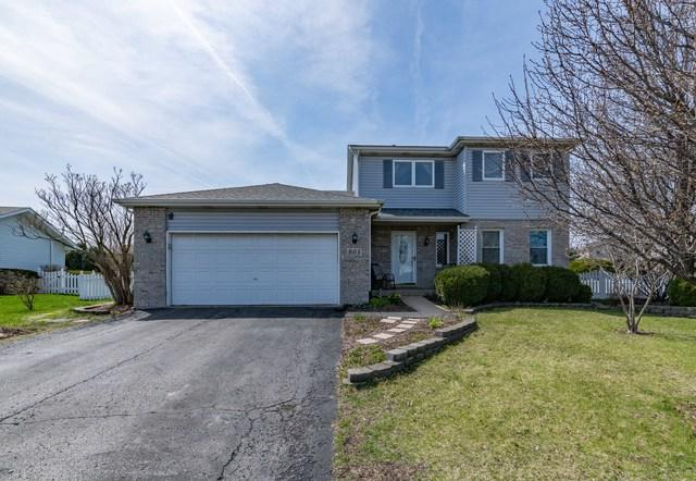 803 Cougar Lane, Oswego, IL 60543 (MLS #10348479) :: Helen Oliveri Real Estate