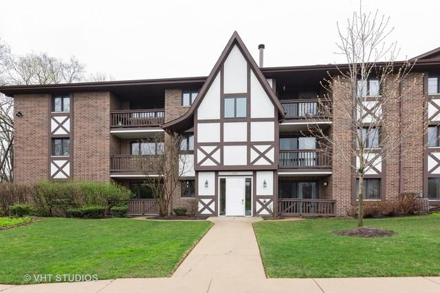 8415 W 95th Street #24, Hickory Hills, IL 60457 (MLS #10349775) :: Baz Realty Network   Keller Williams Preferred Realty