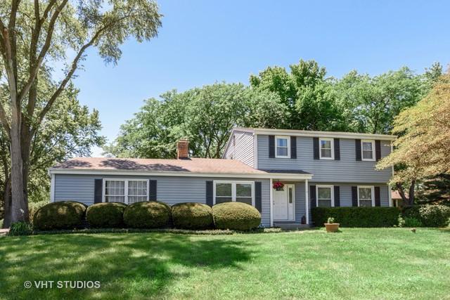 110 Wedgewood Drive, Barrington, IL 60010 (MLS #10350811) :: Ryan Dallas Real Estate
