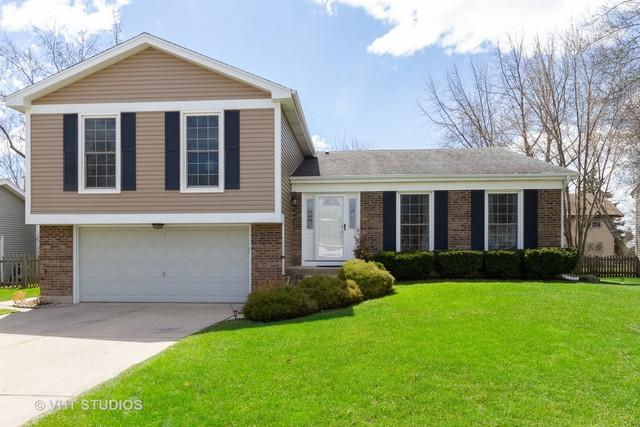 867 Boxwood Drive, Crystal Lake, IL 60014 (MLS #10351477) :: The Jacobs Group