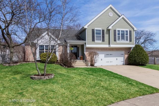 1243 N Sherwood Lane, Palatine, IL 60067 (MLS #10351781) :: Helen Oliveri Real Estate