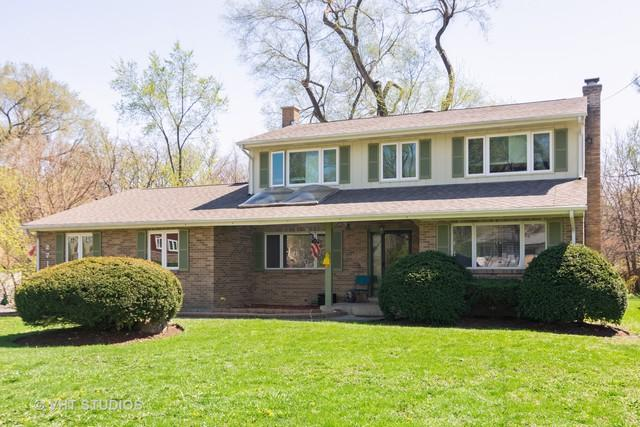 271 W Michigan Avenue, Palatine, IL 60067 (MLS #10358399) :: The Wexler Group at Keller Williams Preferred Realty