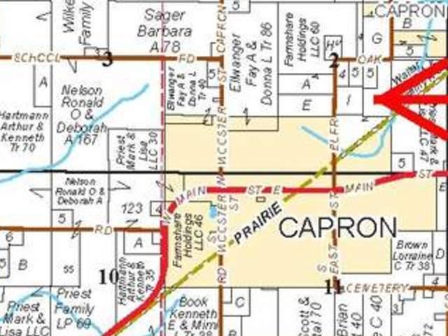 00 Burr Oak Road, Capron, IL 61012 (MLS #10365435) :: Century 21 Affiliated