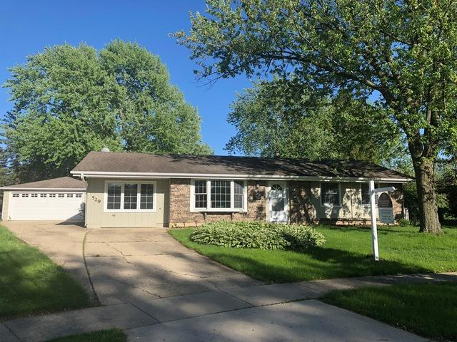 529 Carr Court, Schaumburg, IL 60193 (MLS #10371899) :: Berkshire Hathaway HomeServices Snyder Real Estate