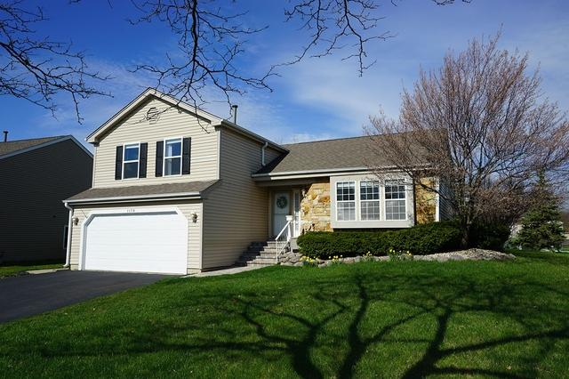 1179 Stanton Road, Lake Zurich, IL 60047 (MLS #10380105) :: Berkshire Hathaway HomeServices Snyder Real Estate