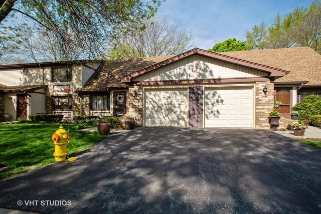 1314 S Mallard Lane, Mount Prospect, IL 60056 (MLS #10380842) :: Berkshire Hathaway HomeServices Snyder Real Estate