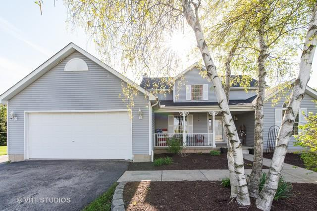 1N971 Mulhern Drive, Elburn, IL 60119 (MLS #10381232) :: Berkshire Hathaway HomeServices Snyder Real Estate