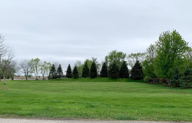 7791 Vida Avenue, Lakewood, IL 60014 (MLS #10381945) :: Berkshire Hathaway HomeServices Snyder Real Estate