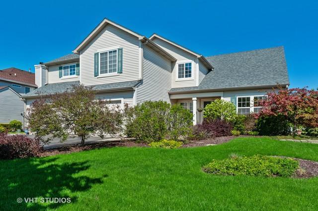 1101 Franklin Street, Mundelein, IL 60060 (MLS #10382216) :: Helen Oliveri Real Estate