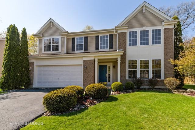 1312 Mayfair Lane, Grayslake, IL 60030 (MLS #10384909) :: Berkshire Hathaway HomeServices Snyder Real Estate