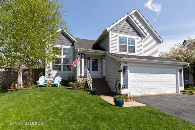 1430 Lawn Court, Grayslake, IL 60030 (MLS #10385311) :: Property Consultants Realty