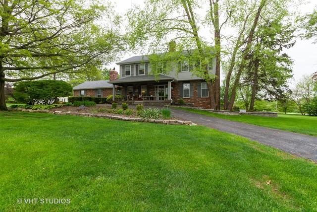976 Shetland Drive, Frankfort, IL 60423 (MLS #10385528) :: Berkshire Hathaway HomeServices Snyder Real Estate