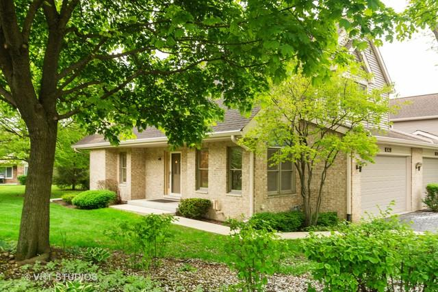 663 N Walden Drive, Palatine, IL 60067 (MLS #10385652) :: The Perotti Group | Compass Real Estate