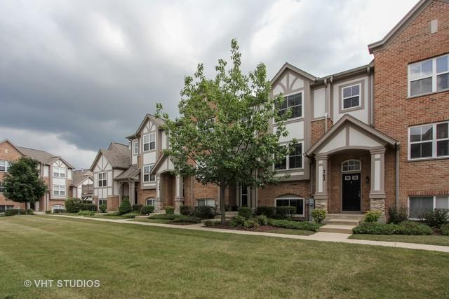 764 June Terrace #764, Lake Zurich, IL 60047 (MLS #10389077) :: Berkshire Hathaway HomeServices Snyder Real Estate