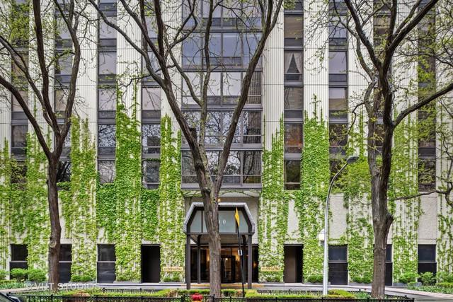 100 E Bellevue Place 11D, Chicago, IL 60611 (MLS #10389169) :: Property Consultants Realty