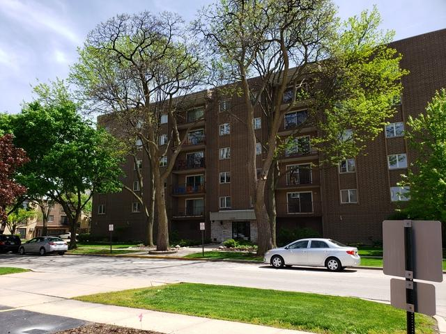1365 Ashland Avenue #203, Des Plaines, IL 60016 (MLS #10390261) :: Berkshire Hathaway HomeServices Snyder Real Estate