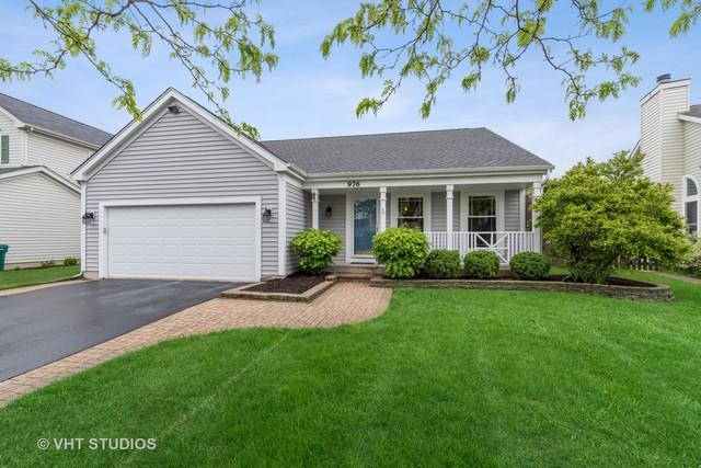 976 Dunhill Road, Grayslake, IL 60030 (MLS #10393130) :: Baz Realty Network | Keller Williams Elite
