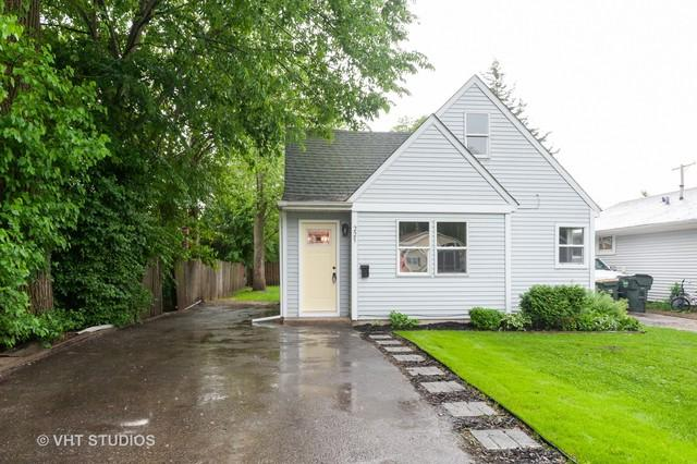 225 E Pineview Drive, Round Lake Park, IL 60073 (MLS #10415222) :: Property Consultants Realty