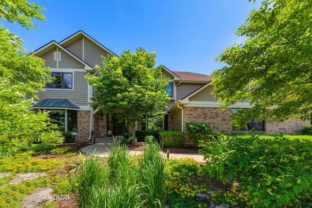 195 Mooregate Trail, Hawthorn Woods, IL 60047 (MLS #10416718) :: Helen Oliveri Real Estate