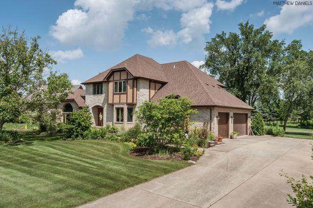 4 Woodland Drive, Lemont, IL 60439 (MLS #10417942) :: Property Consultants Realty