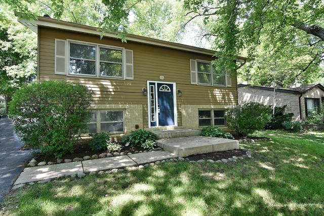 126 Concord Avenue, South Elgin, IL 60177 (MLS #10423419) :: The Wexler Group at Keller Williams Preferred Realty