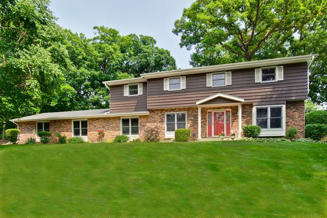 1281 Dairy Lane, Mundelein, IL 60060 (MLS #10444626) :: Angela Walker Homes Real Estate Group