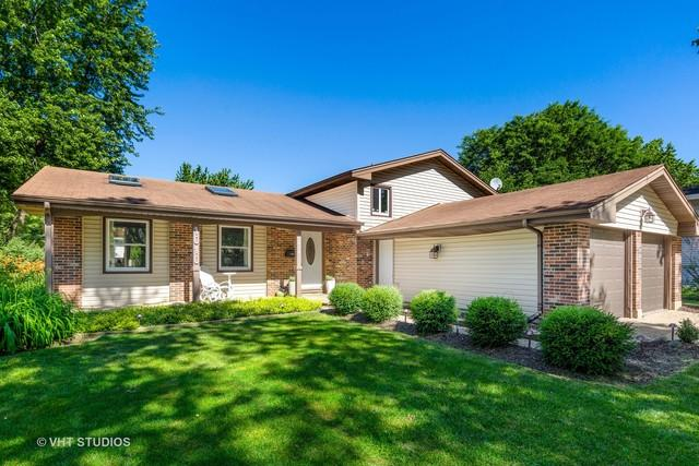 1010 Abbington Drive, Crystal Lake, IL 60014 (MLS #10449709) :: The Mattz Mega Group