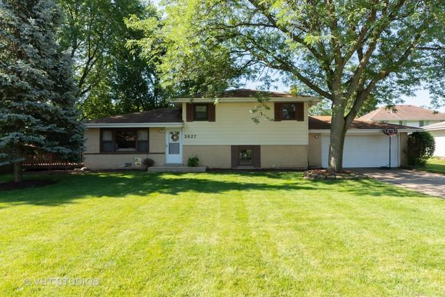 3827 N Galena Court, Arlington Heights, IL 60004 (MLS #10449991) :: Century 21 Affiliated