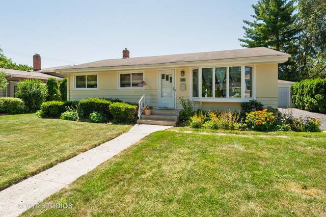 13 Wagner Drive, Cary, IL 60013 (MLS #10451128) :: Baz Realty Network | Keller Williams Elite
