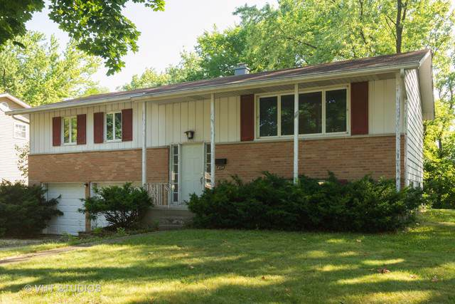 254 N Morris Drive, Palatine, IL 60074 (MLS #10452205) :: Berkshire Hathaway HomeServices Snyder Real Estate