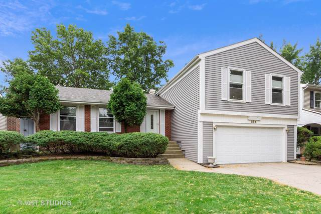 884 Knollwood Drive, Buffalo Grove, IL 60089 (MLS #10455368) :: Helen Oliveri Real Estate
