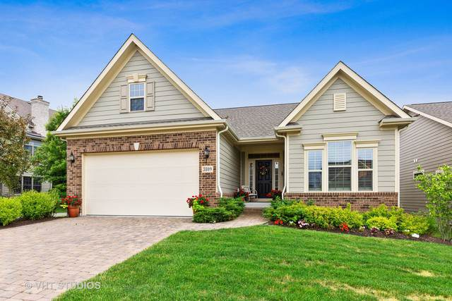 3809 Ridge Pointe Drive, Geneva, IL 60134 (MLS #10455875) :: The Dena Furlow Team - Keller Williams Realty