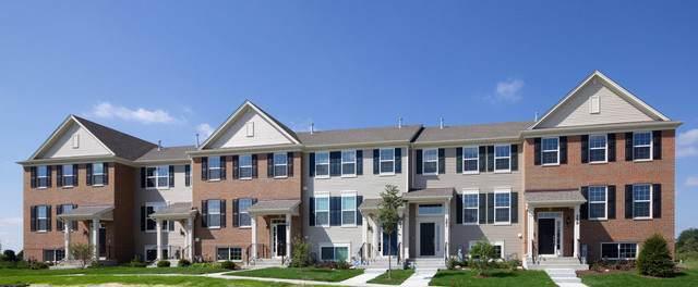 839 Shadowbrook Court, Oswego, IL 60543 (MLS #10466154) :: O'Neil Property Group