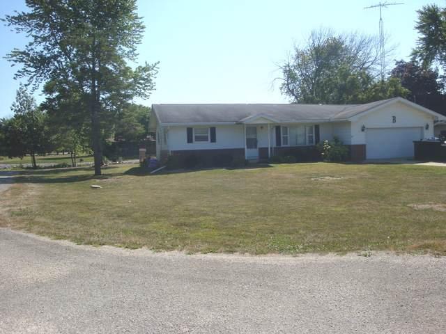 308 S Hislop Drive, Cissna Park, IL 60924 (MLS #10472616) :: Ryan Dallas Real Estate