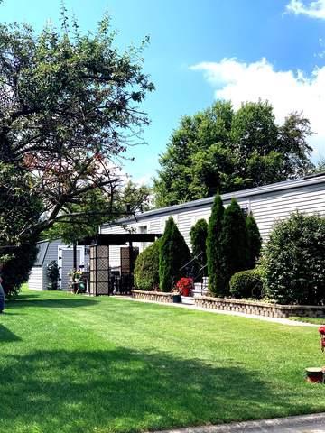 245 Blackthorn Road, Matteson, IL 60443 (MLS #10474927) :: John Lyons Real Estate